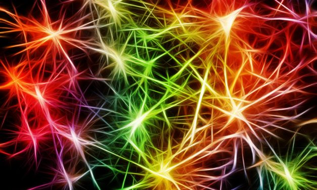 Neuroplasticity: Rewiring the Brain After Trauma (And in Daily Life)